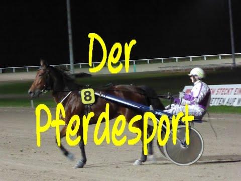 Learn German: Der Pferdesport