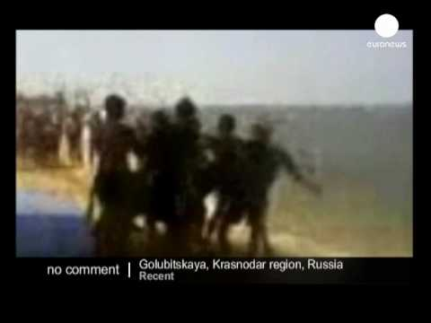 Russia opening cruelty probe about Parasailing donkey video - no comment