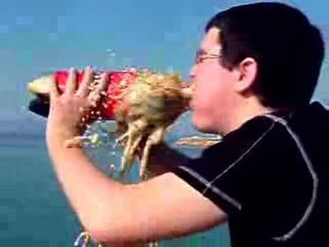 Reacción Coca Cola & Mentos en la Boca de Jony