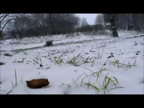 Slash 4x4 snow bash at Hackney Marsh