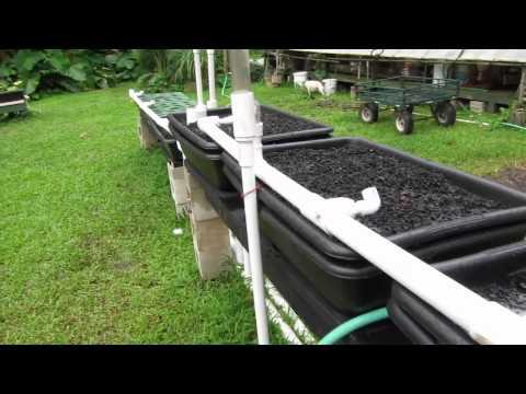Olomana Gardens Aquaponics System