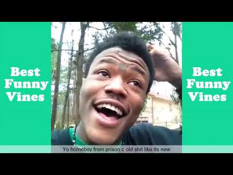 Best DC Young Fly Vines