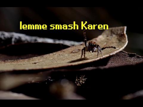 Lemme smash [John].mp4 (видео)