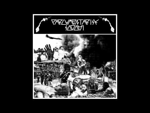 "Parlamentarisk Sodomi - 7"" split with Laserguys FULL EP (2011 - Grindcore)"