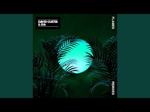 Flames (Vladimir Cauchemar Remix)