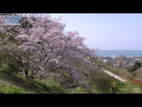 住民ら作業「花の村」に 東桃川花木公園