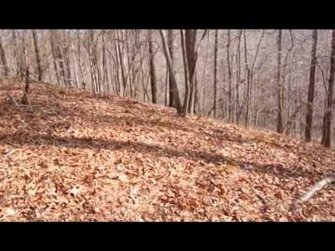 44.27 acres Waldo, AL