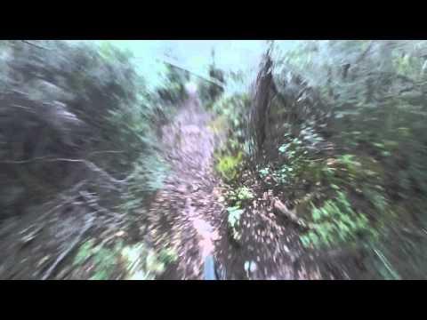 La Selva Mont-Ras