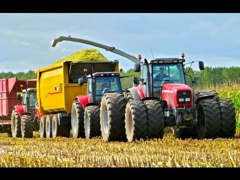 mf - Mais hakselen Van Bakel Dairy 2012 - Claas Jaguar 980 + Orbis 900 12 row header - MF 8690 + USA Equipment 2000 CF - MF 7495 + USA Equipment 2000 CF - MF 7480...