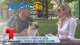 Video oficial de Telemundo Un Nuevo Día. El maratonista Dion Leonard nos cuenta cómo fue que se hizo amigo de la perrita...
