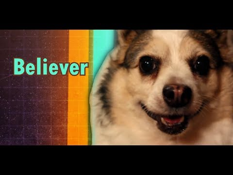 Video Imagine Doggos - Believer download in MP3, 3GP, MP4, WEBM, AVI, FLV January 2017