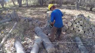 30 Second Tip: how to buck big logs