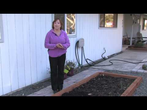 Gardening Tips : How to Build a Vegetable Garden