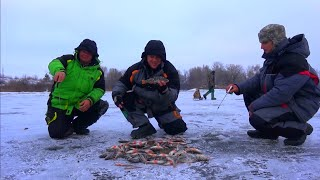 Рыбалка зимой от Михалыча. Ловля окуня со льда на Днепре