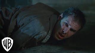 Blade Runner 30th Anniversary Edition -- Deckard vs. Pris
