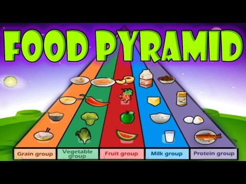 Nutrition, Food Pyramid, Healthy Eating, Educational Videos for Kids, Funny Game for Children