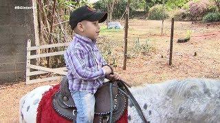 Projeto ensina crianças a cuidar de mini-animais em Bauru