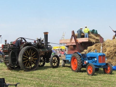 Great Dorset Steam Fair 2013   Day Out | dorset  Walks