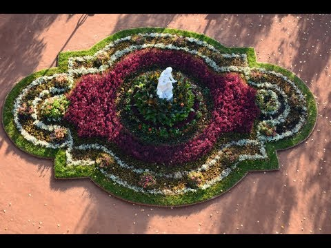 Партизанка: возвращение ландшафтной композиции в Парк Горького (фильм)