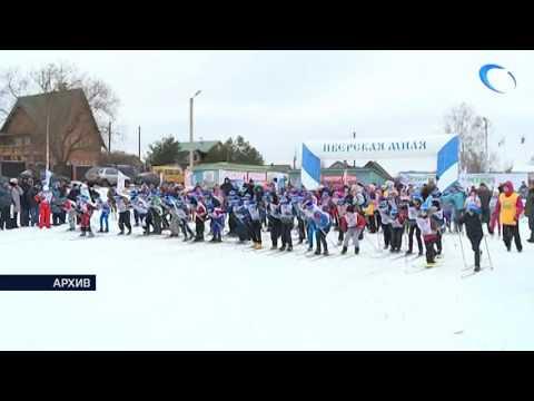 В нашей области открыта регистрация участников массовой лыжной гонки «Лыжня России»