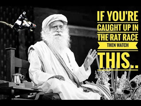 What to do if you are stuck in rat race ? Sadhguru