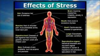 The Health Implications of Stress!