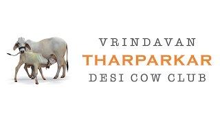 Vrindavan Thaprkar Cow Club