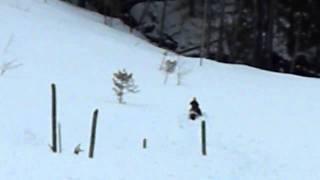 6. 2008 Arctic Cat M8 Climbing