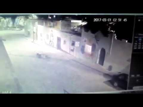 Perros atacan y matan a un gato en Barrio de Xanenetla, Puebla