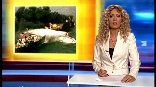 RTL Punkt 12: Robbenbabys Kussi und Bussi- Switch reloaded
