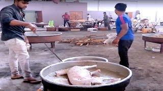 NEVER SEEN BEFORE? - Cooking a 10 KG full GOAT// Cooking Mutton Kulambu //street food