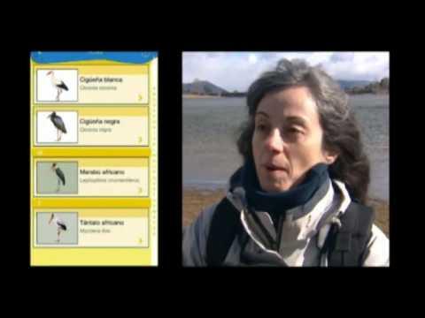 Primera App para observar y conocer sobre el terreno las aves españolas