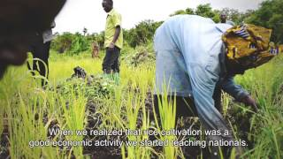 National UN Volunteer Albert Akandonde, a UNV Livelihood Specialist at a refugee settlement in Uganda, supported the Tukwatanise Rice Group in which Ugandan nationals learn to grow rice, a new crop for the area, from refugees from the Democratic Republic of the Congo.