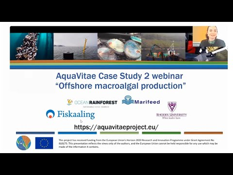 Case Study Meeting - Offshore Macroalgae Cultivation