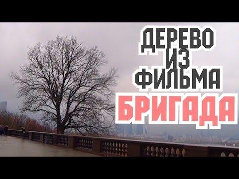 Топ места Москвы. Новодевичье кладбище. Вместо урока истории.