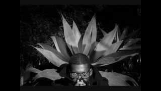 Flying Lotus - Sasha Grey 2/27/12