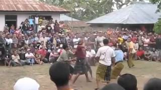 Bajawa Indonesia  city photos : Tradisi Sagi (Tinju Adat) in Bajawa, Indonesia