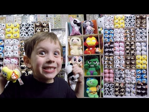 Ty Teeny Tys Full Display Set Up Ty Beanie Boos Dolls Beanie Boo Collection Review Video