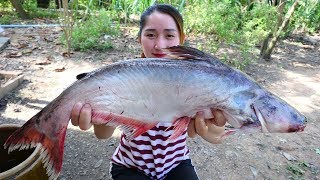 Video Yummy Pangasius Fish Fry Ginger Cooking Soybean Past - Fish Cooking - Cooking With Sros MP3, 3GP, MP4, WEBM, AVI, FLV Maret 2019