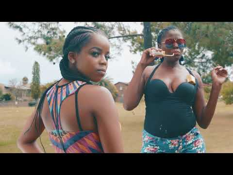 All House Walk ft. Fash Ngobese & TaFire (Comedy Music Video)
