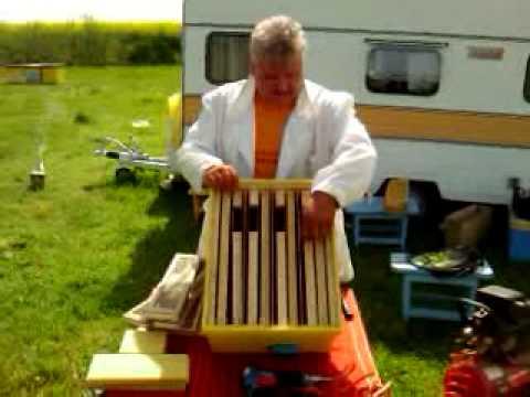 video apicultura.mp4