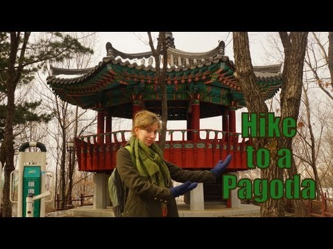 Hiking through a forest to visit a Korean Pagoda in Yongin, Korea