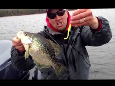 Finding Spring Crappies and How to Filet Crappies