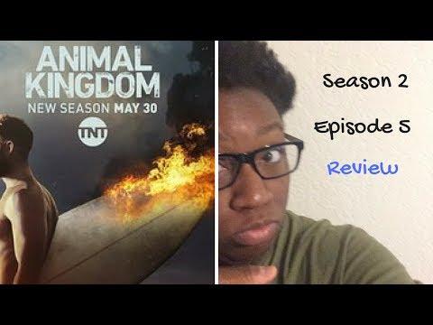 Animal Kingdom Season 2 Episode 5 Review / Recap