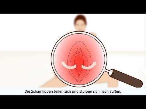 orgasmus - Diese Animation erklärt alles über den weiblichen Orgasmus. Jede Stufe des weiblichen Orgasmus beschrieben. Mit Gesundheit TV können Sie komplexe medizinisch...