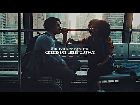 daniel & natasha (the sun is also a star)   crimson and clover
