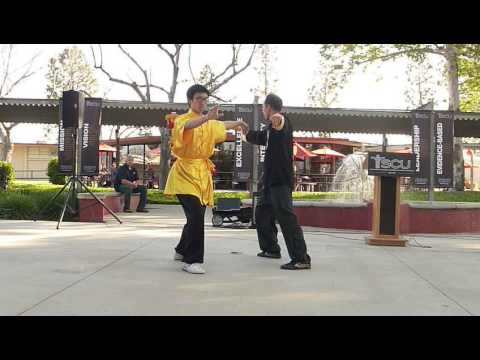 Fairwell Taiji performance for SCUHS's Founding AOM Dean