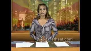 ESAT Ethiopia News May 31, 2012
