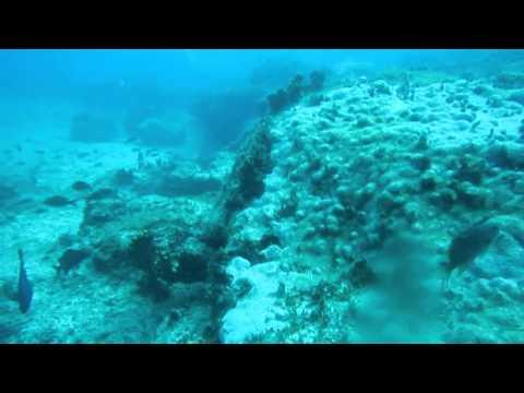 Mergulho em Cabo Verde