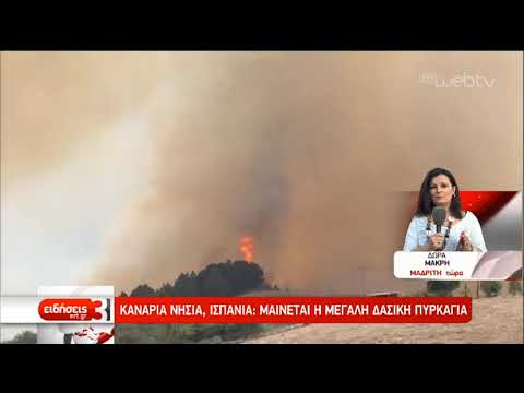 Ανεξέλεγκτη η πυρκαγιά στο νησί Γκραν Κανάρια- Απομακρύνθηκαν 8.000 άνθρωποι | 19/08/2019 | ΕΡΤ